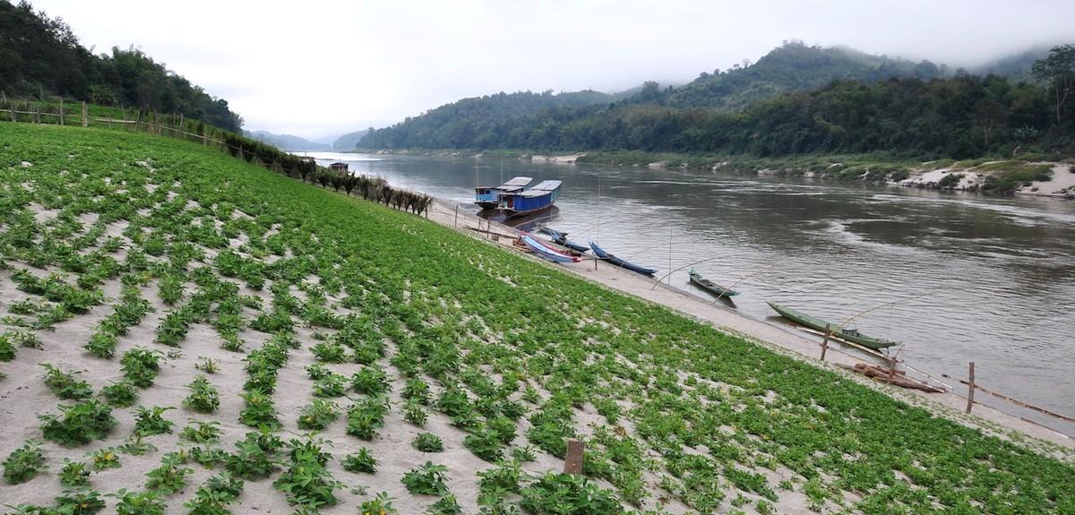 Pak Beng Dam site