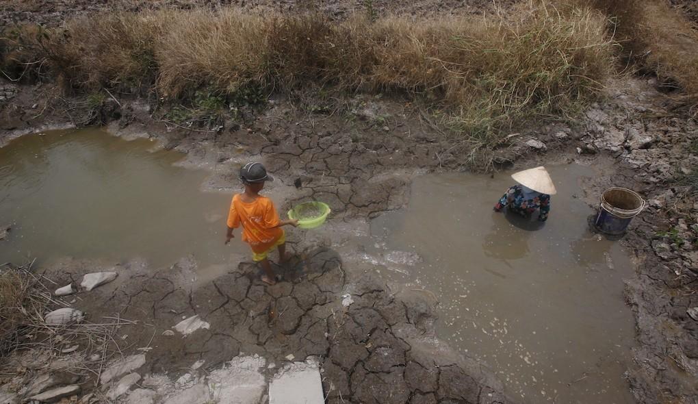 Vietnam Delta drought