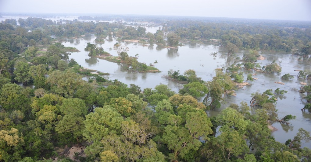 Aerial view of Stung Treng Ramsar site's unqiue flooded forests